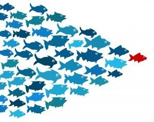 managing-partner-leader-graphic-fish-300x238